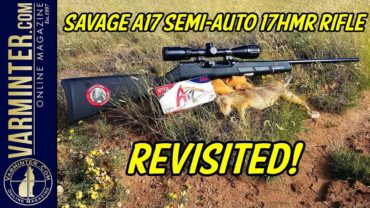 Savage A17 Semi Auto 17HMR Rifle Revisited