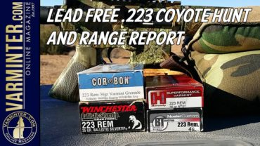 Lead-Free-Coyote-Hunt-Title