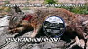 Predator International – Metalmag Airgun Hunting Pellets Hunt Report & Review