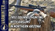 Tree Squirrel Hunting with Airguns in Northern Arizona