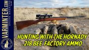 Hornady-218-Bee-Factory-Ammunition-Video-Title